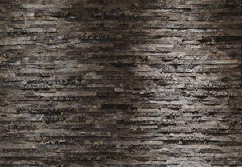 KOMAR Fototapetas »Birkenrinde« 368/254 cm
