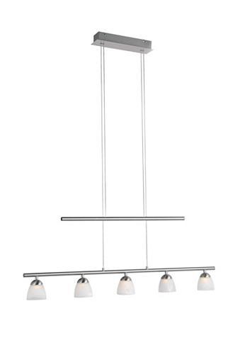 LED lubų šviestuvas (5flg.)