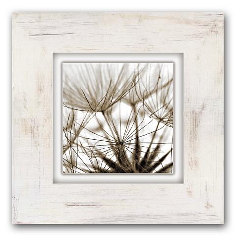 Holzbild »Pusteblumen« 40/40 cm