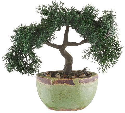 Dirbtinis augalas »Bonsai« (2vnt.)