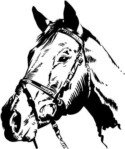 Wall-Art Wandtattoo »Pferdekopf«