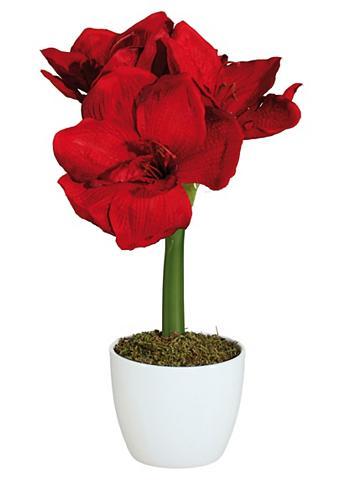 Dirbtinė gėlė »Amaryllis« (2 vnt.)