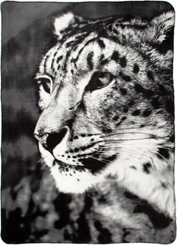 BIEDERLACK Užklotas »Leopard« su Leopardenmotiv