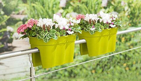 Vazonas gėlėms »Flowerclip XXL«