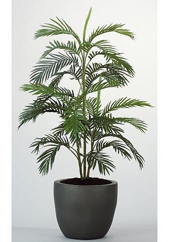 Dirbtinis augalas »Arecapalme«