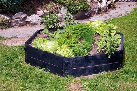 KHW Dėžė kompostui »Basismodul 550l«