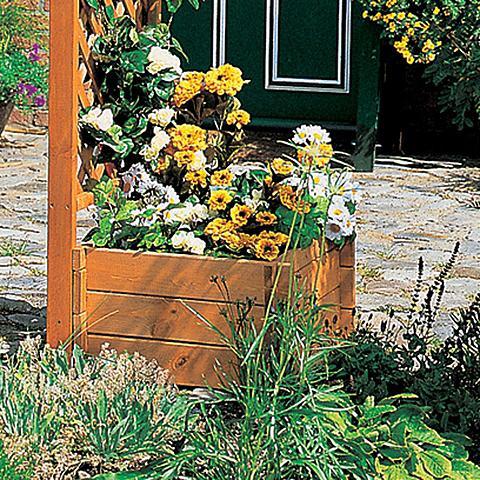 Rinkinys: Vazonas-dėžė augalams