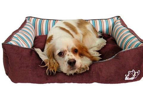 Šuns gultas ir Katzenbett »-Star«