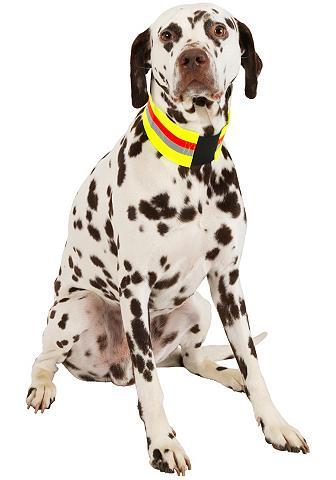 HEIM Šuns antkaklis »Signalhalsband«