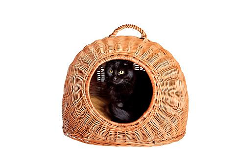 Transportavimo dėžė »Katzenkorb«