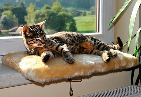Gultas ant palangės »Relax«