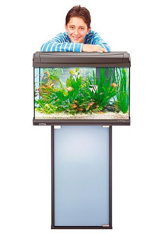 Aquarien-Unterschrank » Aqua Art« dėl ...