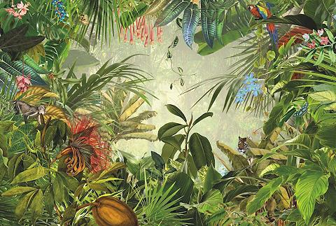 Tapetai »Into The Wild« 368/248 cm