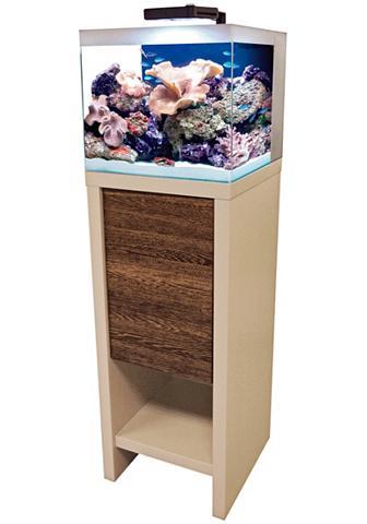 FLUVAL Akvariumas »Reef M40« dėl Meerwasser B...