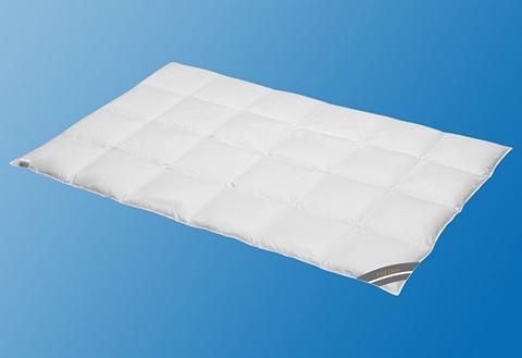 Rinkinys: pūkinė antklodė + pagalvė Fi...