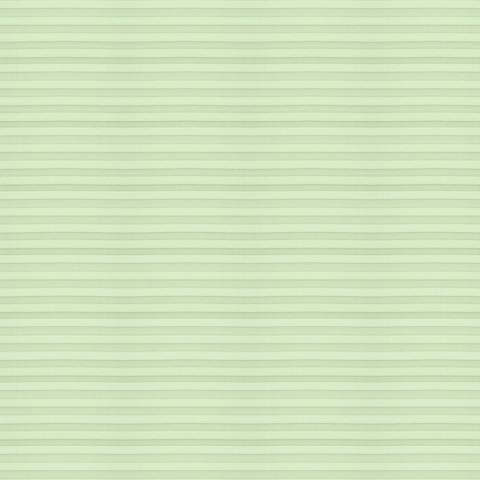 Plisuotos žaliuzės Wunschma