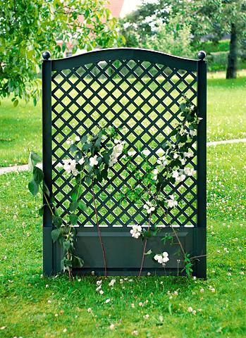 Ažūrinė sienelė gėlėms »100x140 cm grü...