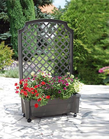 Ažūrinė sienelė gėlėms »mit Lauko vazo...