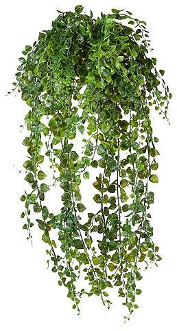 Dirbtinis augalas »Ranke«