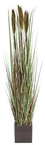 HOME AFFAIRE Dirbtinis augalas »Gras« ca. 120 cm ho...