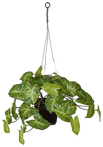 Dirbtinis augalas »Grünpflanzen«