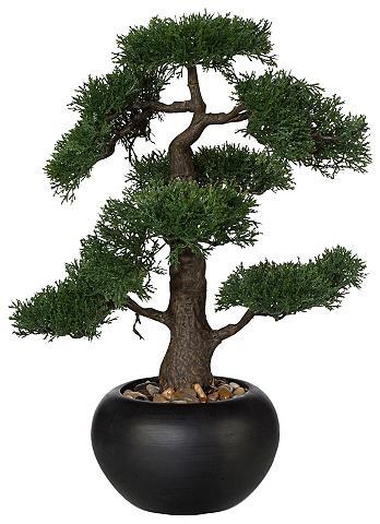 HOME AFFAIRE Dirbtinis augalas »Bonsai« im Keramiki...