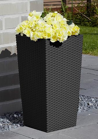 PROSPERPLAST Vazonas gėlėms »Rato Square 325« anthr...