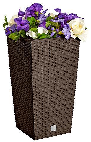 PROSPERPLAST Vazonas gėlėms »Rati Square 325« braun...