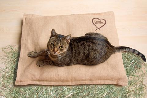 Šuns gultas ir Katzenbett »Bio Heubett...