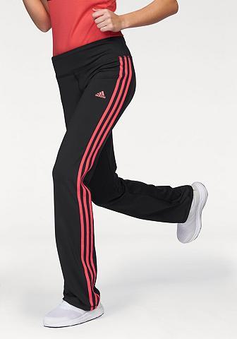 BASIC 3S Kelnės Sportinės kelnės (arba...