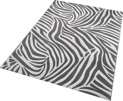 Kilimas »Zebra« gyvūnų raštas