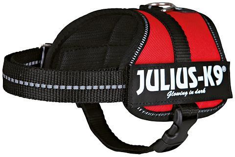 Hunde-Geschirr »Julius-K9 Baby 2/XS-S«...