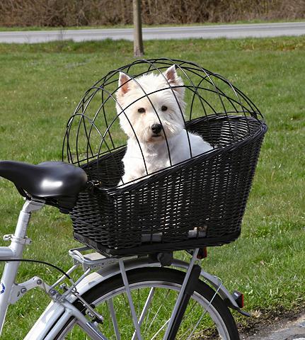 Hunde-Fahrradkorb B/T/H: 35/55/49 cm i...