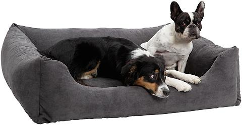 Šuns gultas ir Katzenbett »Madison« B/...