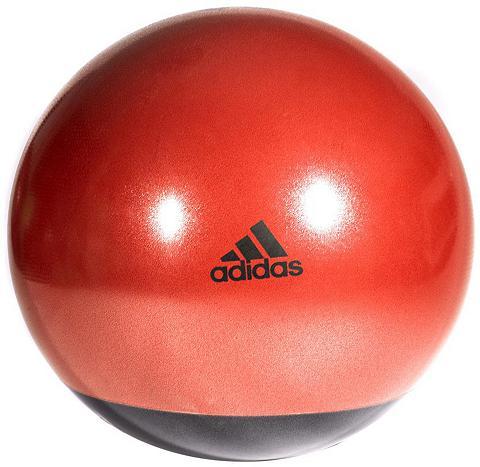 Gimnastikos kamuolys »Premium Gymball ...