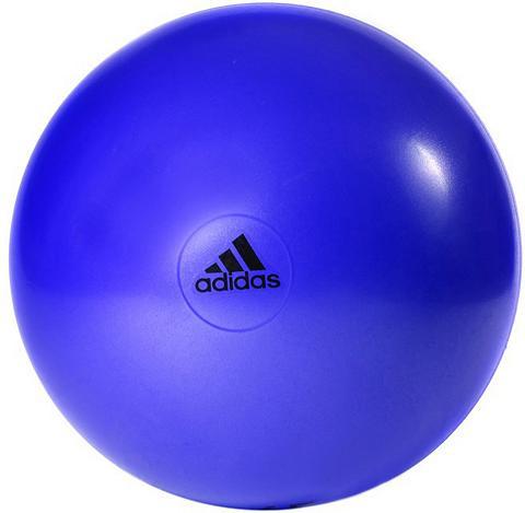 ADIDAS PERFORMANCE Gimnastikos kamuolys »Gymball purple«
