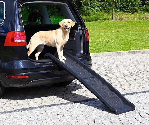 Hunde-Rampe »Petwalk aufklappbar« Bx L...