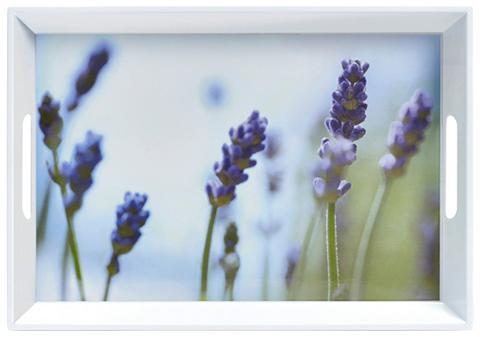 ZELLER Padėklas »Lavendel«