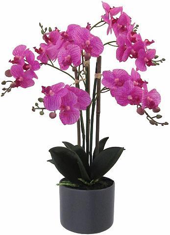 Dirbtinė gėlė »Orchidee« täuschend ech...