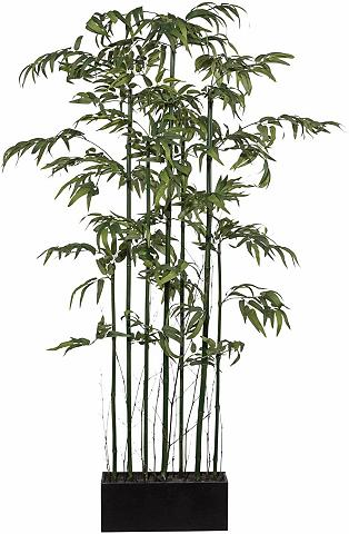 HOME AFFAIRE Dirbtinis augalas »Bambus Raumteiler«