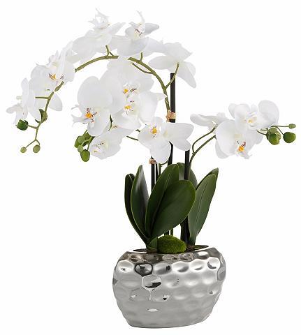Dirbtinė gėlė »Orchidee« 55 cm