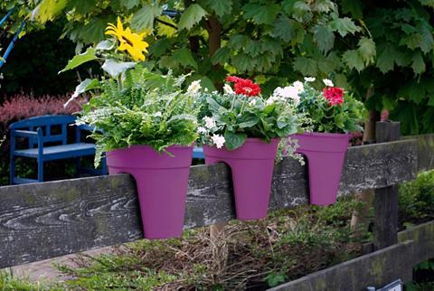 Rinkinys: Vazonas gėlėms »Flowerclip« ...