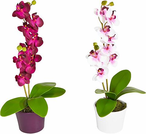 Dirbtinė gėlė »Orchidee« (2vnt.)