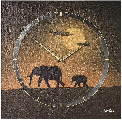 Sieninis laikrodis »W9523«