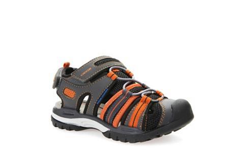 Sandalai »J Borealis«