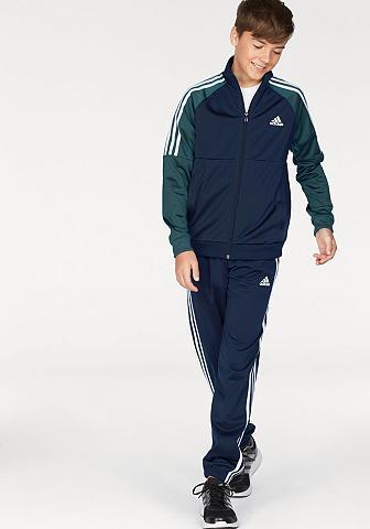 Sportinis kostiumas »YB TIBERO TRACK S...