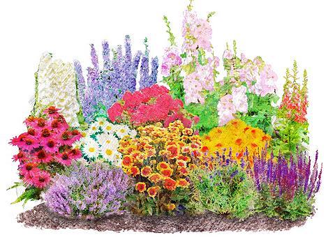 : Beetpflanzen-Set »Landhausgarten« 12...
