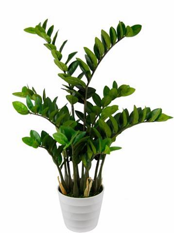 Dirbtinis augalas »Tropenwurz«
