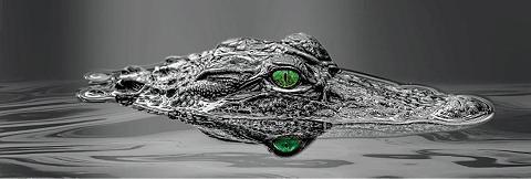 INOSIGN Paveikslas »Alligator Eyes« Tiermotiv