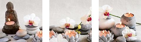 Sienos lipdukų rinkinys »White Orchids...